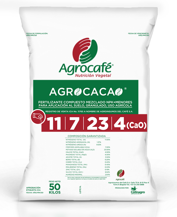 agro cacao1
