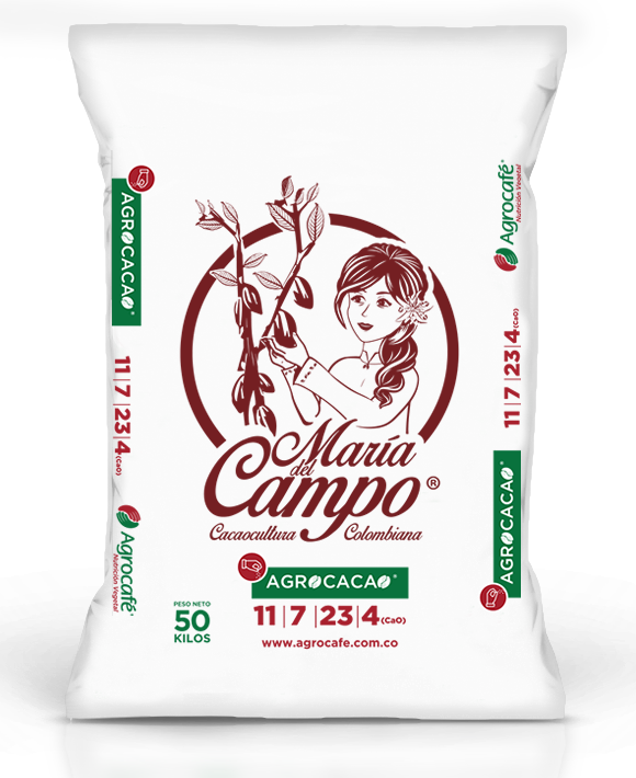 agro cacao2